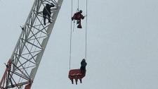 crane, rescue