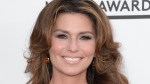 Shania Twain is shown in this undated photo. (AFP / Robyn Beck)