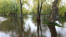 flooding, centreville, toronto island