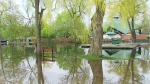 City officials say nearly 50 per cent of Toronto Islands is underwater with Thursday's recent deluge of rain. (CP24)