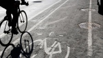 A cyclist riding in a protected bike lane is pictured in this file photo. (Jim Mone/AP Photo)