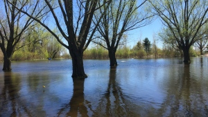 Toronto Islands Flooding