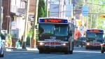 express TTC bus routes increased
