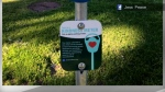 kindness meters