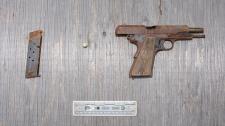 Pinnock gun