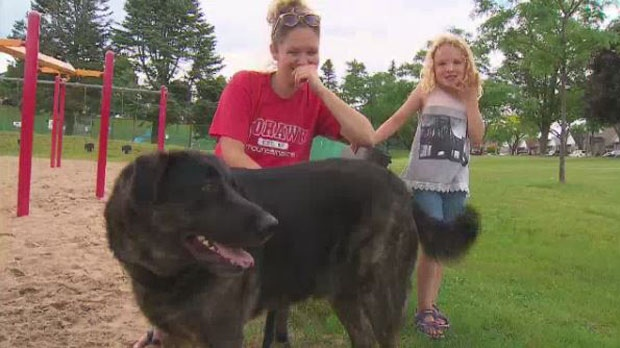Dog off-leash crackdown Alanna Anderson