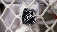 NHL logo is seen on a goal, on Sept. 17, 2012. (THE CANADIAN PRESS / AP / Mark Humphrey)