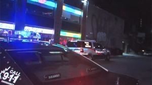 Police are investigating after shots were fired in Chinatown overnight.