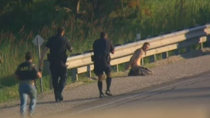 One person is taken into custody after a police pursuit on Highway 400 north of Toronto on Wednesday.
