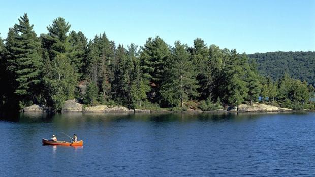 Canoeing in Ontario's Algonquin Provincial Park