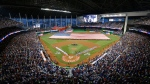 The National Anthem is played during the MLB baseball All-Star Game, Tuesday, July 11, 2017, in Miami. (AP Photo/Wilfredo Lee)