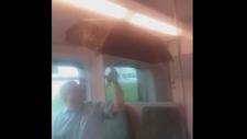 Leaking GO Train