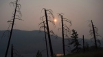 Burnt trees are pictured in front of a smoke-filled sky near Old Fort, B.C., Tuesday, July 11, 2017. Over one hundred wildfires are burning throughout British Columbia, forcing thousands of residents to be evacuated or on put on alert. THE CANADIAN PRESS/Jonathan Hayward