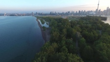 Toronto, Island