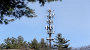In this March 13, 2017 photo, a cell tower is seen through trees in North Andover, Mass. (AP Photo/Elise Amendola)