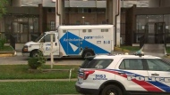 One person is dead following a stabbing in North York early Tuesday morning.