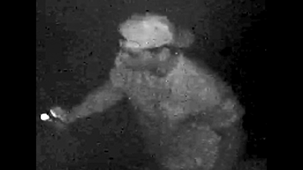 A suspect in a graffiti investigation in Markham is seen in a handout image. (YRP)
