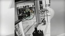 North York Sheridan Mall, murder, shooting