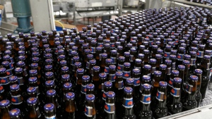 Freshly brewed bottles of Labatt Blue come off the bottle line at the Labatt brewery in London, Ontario. Labatt Breweries of Canada says it is investing $460 million between 2017 and 2020 to enhance its operations and help boost growth. The Canadian Press Images PHOTO/Labatt Breweries of Canada MANDATORY CREDIT