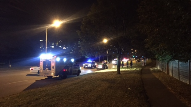 Pedestrian dies after being hit by vehicle on McCowan Road