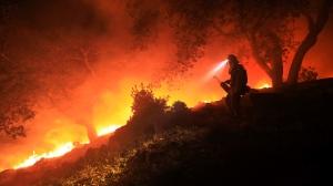 California, fires