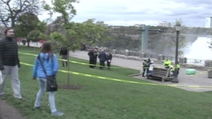 Niagara Falls incident