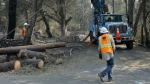 A Pacific Gas & Electric crew work on replacing poles Wednesday, Oct. 18, 2017, in Glen Ellen, Calif. California fire officials have reported significant progress on containing wildfires that have ravaged parts of Northern California. (AP Photo/Ben Margot)