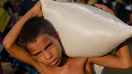 A Rohingya Muslim boy Rehmat Ullaha, who crossed over from Myanmar into Bangladesh, carries a sack of rice given to him in aid at Kutupalong refugee camp, Bangladesh, Monday, Oct. 23, 2017. (AP Photo/Dar Yasin)