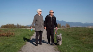 Max Morton and his wife Sharon walk their dog Barney along the Fraser River near their home in Richmond, B.C., on Monday October 30, 2017. He's one of 411 patients who had transcatheter aortic valve replacement surgery where the damaged aortic valve is replaced without removing the old one. The procedure is an alternative to the more invasive open-heart surgery. THE CANADIAN PRESS/Darryl Dyck