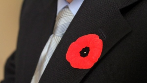 Ret. Sergeant Tom Hoppe wears a poppy on his suit jacket at his house in Kingston, Ont., on Thursday, Nov. 8, 2012. THE CANADIAN PRESS/Lars Hagberg