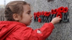 Joelle Choueiry, 3, of Ottawa, places a poppy on the National War Memorial following the Remembrance Day ceremony, in Ottawa in a November 11, 2015, file photo. THE CANADIAN PRESS/Sean Kilpatrick