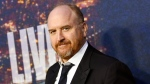 """FILE - In this Feb. 15, 2015 file photo, Louis C.K. attends the SNL 40th Anniversary Special in New York. John Landgraf, CEO of FX, told reporters Friday, Aug. 7, that Louis C.K. needs an """"extended hiatus"""" before returning to work on the critically acclaimed series. C.K. has co-created a new comedy with frequent collaborator, Pamela Adlon, which she will star in called """"Better Things."""" He will also produce. Landgraf also said C.K. has a third series in the works for FX. (Photo by Evan Agostini/Invision/AP, File)"""