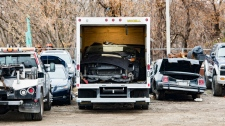 Police say 32 vehicles stolen from commuter lots across the GTA were found at a car parts supply shop in North York. (York Regional Police handout)
