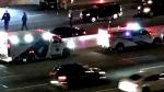 Emergency crews are seen on scene of multiple crashes on Highway 427 near Dundas Street West. (Twitter/Natasha Biondolillo)