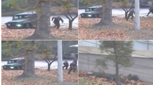 This combination of images made from Nov. 13, 2017, surveillance video released by the United Nations Command shows a North Korean soldier running from a jeep and then shot by North Korean soldiers in Panmunjom, North Korea, before collapsing across the border in South Korea. A North Korean soldier made a desperate dash to freedom in a jeep and then on foot, being shot at least five times as he limped across the border and was rescued by South Korean soldiers, according to dramatic video released by the U.S.-led U.N. command Wednesday, Nov. 22, 2017. (United Nations Command via AP)