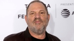 "In this April 28, 2017 file photo, Harvey Weinstein attends the ""Reservoir Dogs"" 25th anniversary screening during the 2017 Tribeca Film Festival in New York. A new lawsuit is accusing Weinstein of sex trafficking by luring an aspiring actress into a French hotel room where he sexually assaulted her. (Photo by Charles Sykes/Invision/AP, File)"