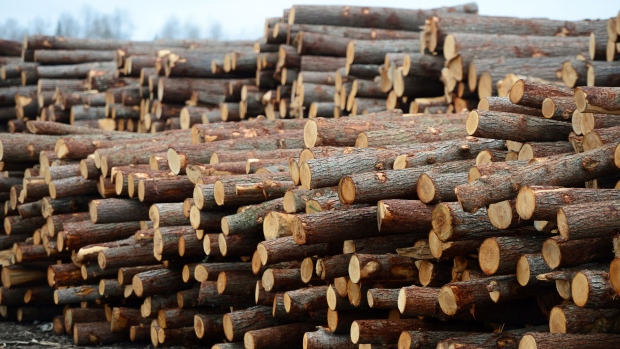 U.S. agency rules against Canada; says softwood imports ...