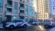 Police cruisers are shown outside a building near Sherway Gardens Road and Evans Avenue following a reported stabbing. (Cristina Tenaglia)
