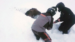 Snowmobilers Jonathan Anstey, left, and Tyrone Owens work together to free a moose trapped by deep snow near Deer Lake, N.L. on Saturday Dec. 30, 2017. THE CANADIAN PRESS/HO-Jonathan Anstey