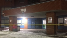 stabbing, North York,