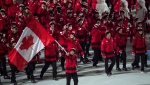 Hayley Wickenheiser leads the Canadian team into the stadium during opening ceremonies at the Sochi Winter Olympics in Sochi, Russia, on February 7, 2014. Prime Minister Justin Trudeau and members of the Canadian Olympic Committee will announce the flag bearer for the upcoming Winter Games in Pyeongchang, South Korea on Tuesday morning. Joining the Prime Minister will be Ken Heher, Minister of Sport and Persons with Disabilities, COC president Tricia Smith and Canada's chef de mission Isabelle Charest. Hockey player Hayley Wickenheiser was the flag bearer for the opening ceremony of the 2018 Winter Olympics in Sochi, Russia. THE CANADIAN PRESS/Paul Chiasson