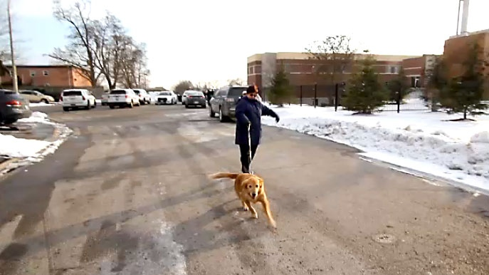 A dog reunited with its owner after a dog walker van was stolen in the Whitby area on Jan. 19, 2018.
