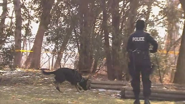 Cadaver dogs were spotted at a Leaside property linked to accused killer Bruce McArthur.