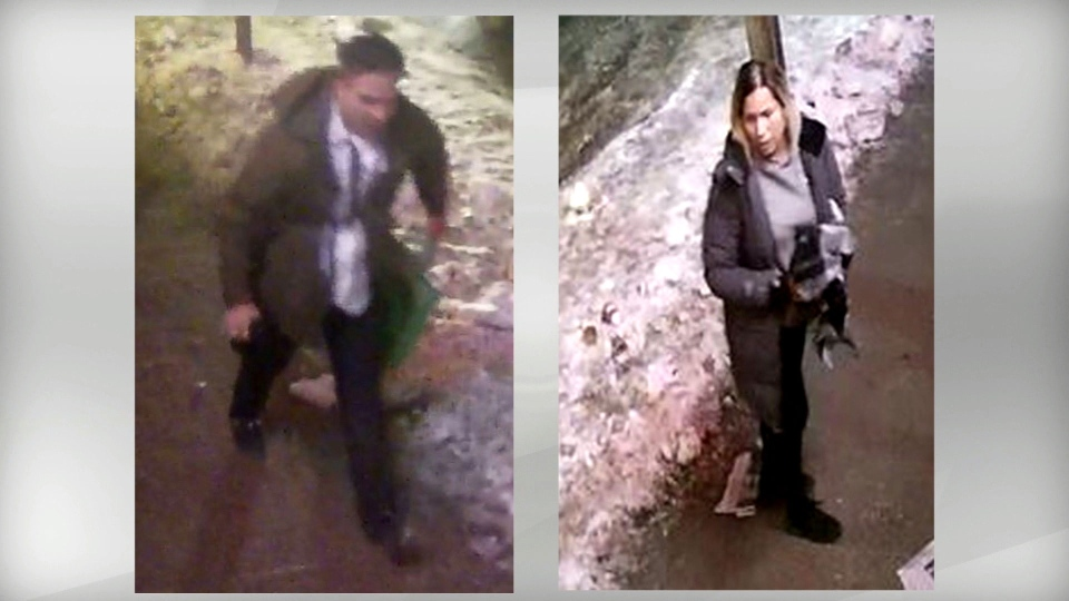Police have released photos of two suspects wanted in connection with a theft and assault in the downtown core. (Toronto Police Service handout)