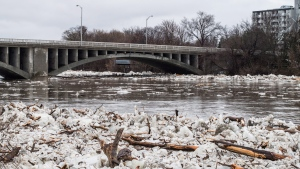 Ice is seen in the high waters of the Grand River in Brantford where residents were being evacuated due to flooding after an ice jam upstream of Parkhill Dam sent a surge of water downstream on Wednesday, February 21, 2018. THE CANADIAN PRESS/Aaron Vincent Elkaim