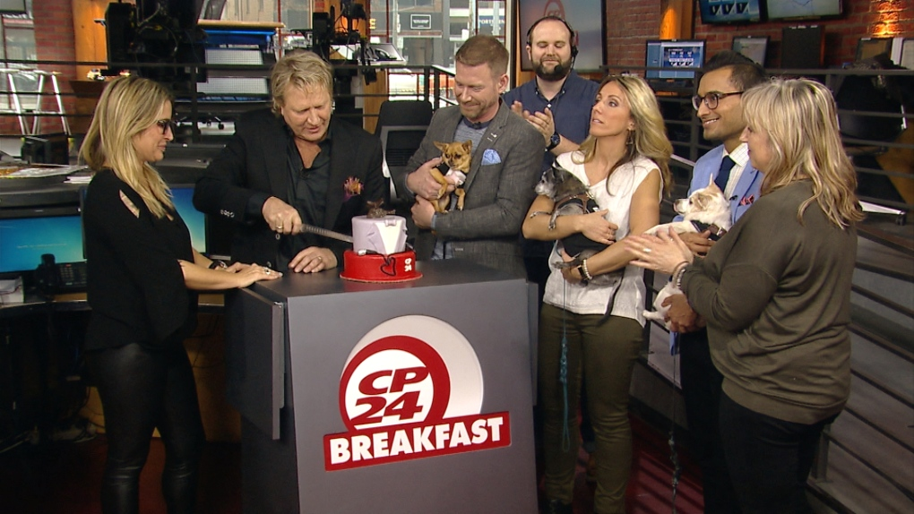 Steve Anthony bids farewell to CP24 | CP24 com