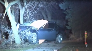 Police say one man is dead after he fled the scene of a collision in Malvern and later crashed into a tree.