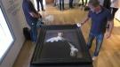 Rembrandt art piece discovered