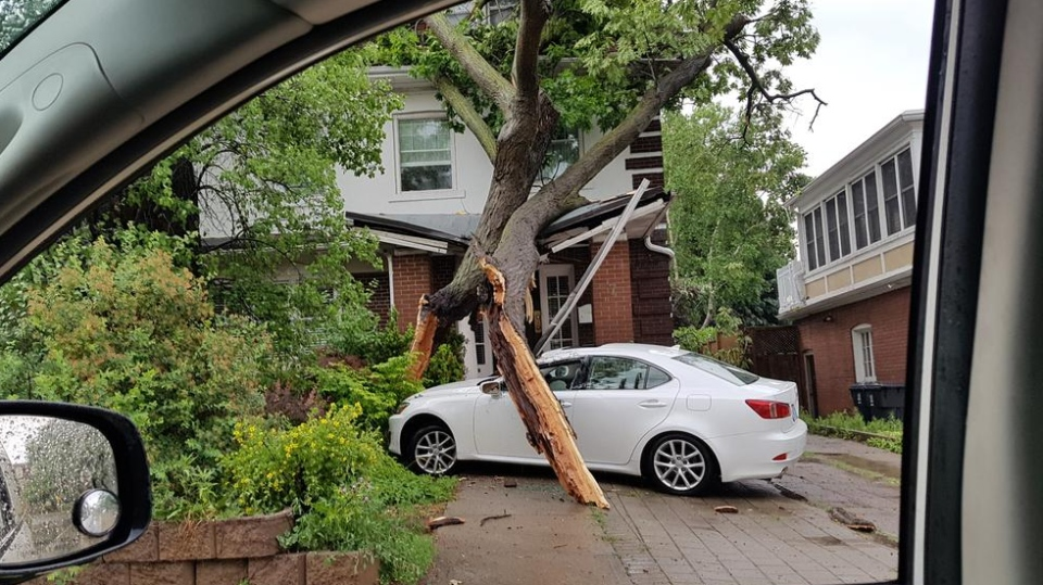 A large tree lies across the roof of a home in the area of Avenue Road and St. Clair Avenue Wednesday June 13, 2018.  (@3_FSTA_3 /Twitter)