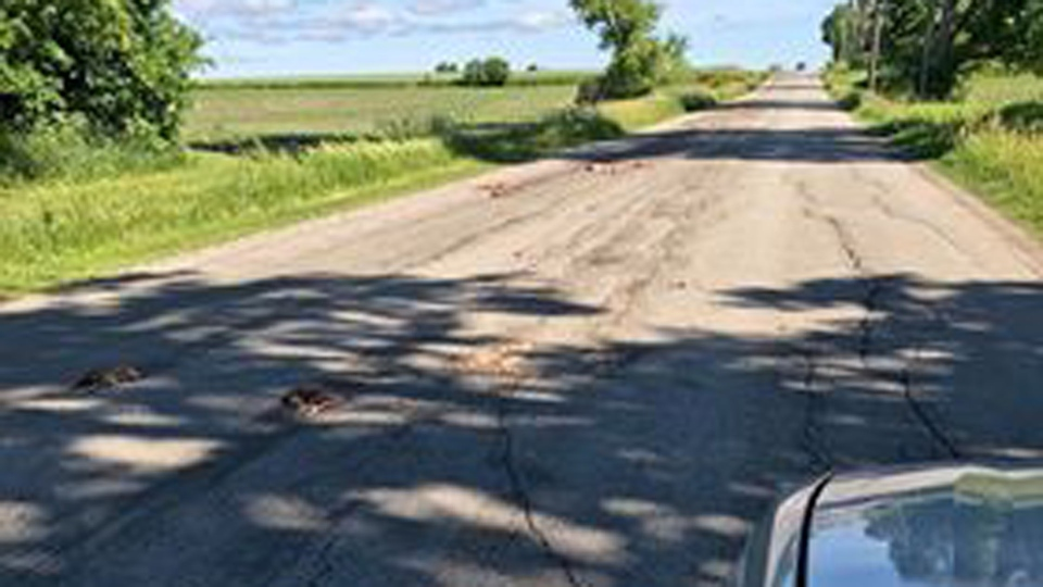 Dead animals lie strewn across Concession Road 3 in Adjala-Tosorontio Township June 19, 2018. (Teresa Stewart)